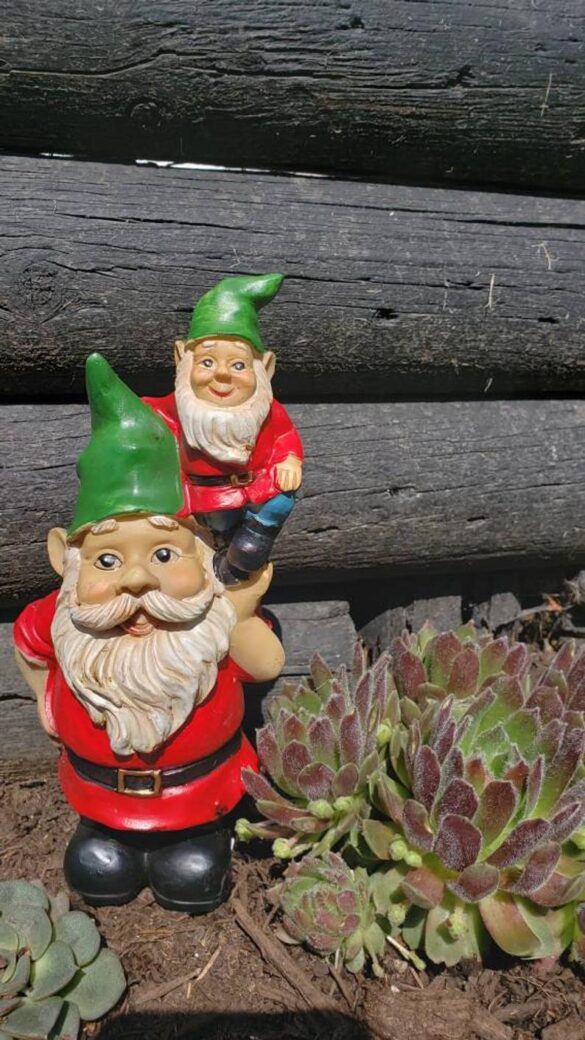 Green Hat gnome on gnome